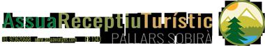 Assua Viatges Logo